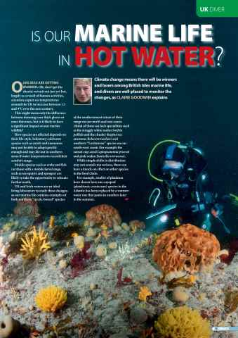 DIVER Preview 79