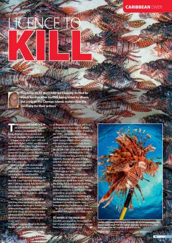DIVER Preview 91