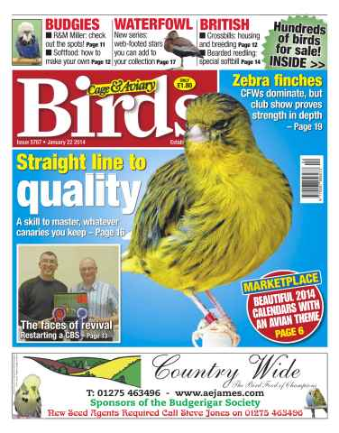 Cage & Aviary Birds issue No.5787 Straight line to quality