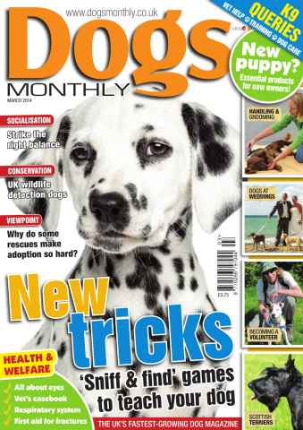 Dogs Monthly issue Dogs Monthly March 2014
