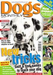 Dogs Monthly March 2014 issue Dogs Monthly March 2014