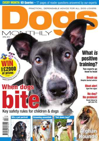 Dogs Monthly issue Dogs Monthly April 2014