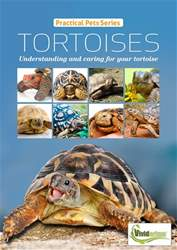 TORTOISES Understanding and caring for your tortoise issue TORTOISES Understanding and caring for your tortoise