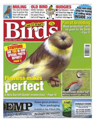 Cage & Aviary Birds issue No.5794 Flawless Makes Perfect