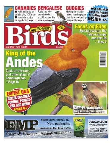 Cage & Aviary Birds issue No.5796 King of the Andes