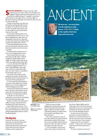 DIVER Preview 52