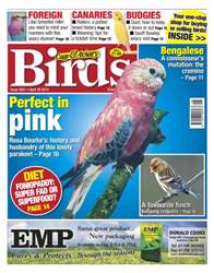 Cage & Aviary Birds issue No.5801 Perfect in Pink
