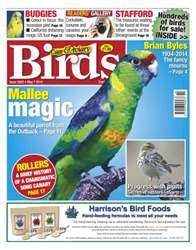 Cage & Aviary Birds issue No.5802 Mallee Magic