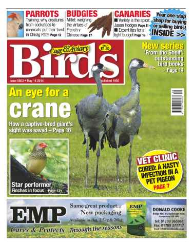 Cage & Aviary Birds issue No.5803 An eye for a Crane