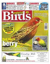 Cage & Aviary Birds issue No.5804 Red like a berry