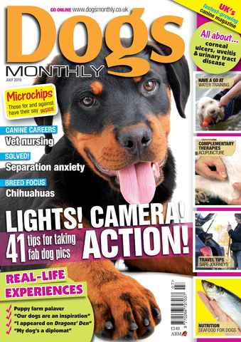 Dogs Monthly issue July 2010