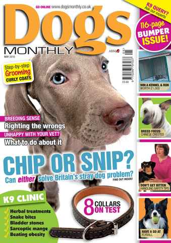 Dogs Monthly issue May 2010
