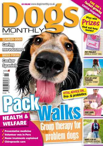 Dogs Monthly issue November 2010