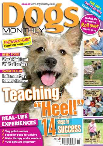 Dogs Monthly issue October 2010