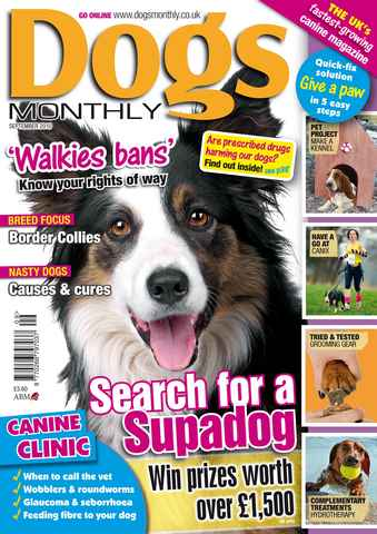 Dogs Monthly issue September 2010