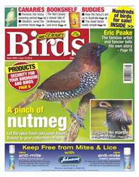 Cage & Aviary Birds issue No.5808 A Pinch of Nutmeg