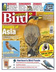 Cage & Aviary Birds issue No.5810 Essence of Asia