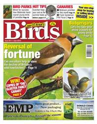 Cage & Aviary Birds issue No.5811 Reversal of Fortune