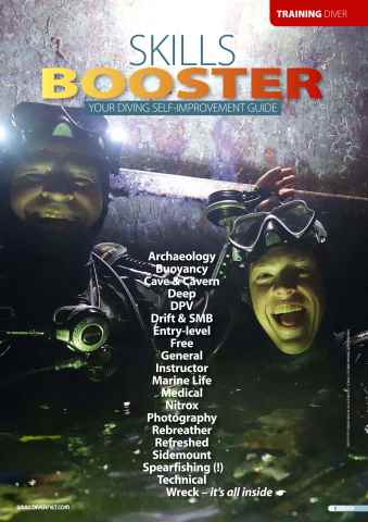 DIVER issue DIVER Skills Booster