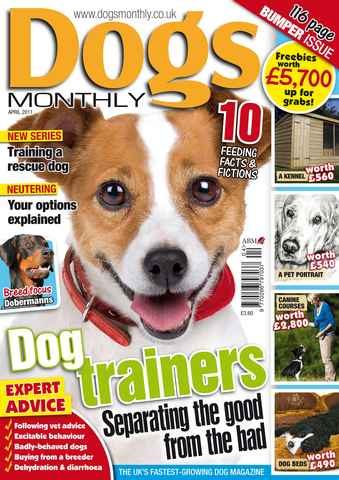 Dogs Monthly issue April 2011