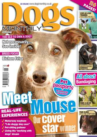 Dogs Monthly issue January 2011