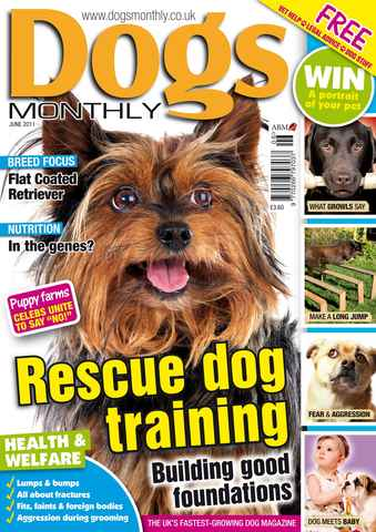 Dogs Monthly issue June 2011
