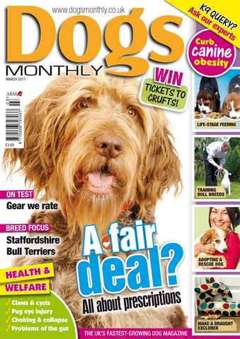 Dogs Monthly issue March 2011