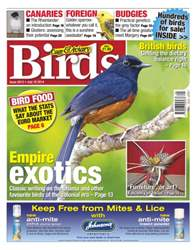 Cage & Aviary Birds issue No.5812 Empire Exotics