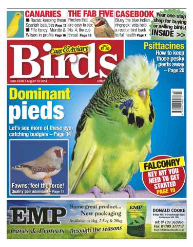 Cage & Aviary Birds issue No.5816 Dominant Pieds