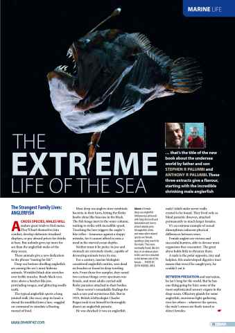 DIVER Preview 75