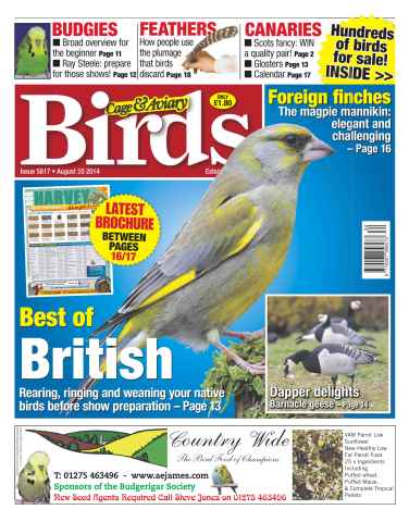 Cage & Aviary Birds issue No.5817 Best of British