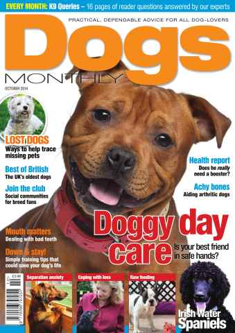 Dogs Monthly issue Dogs Monthly October 2014