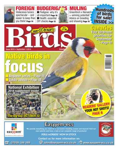 Cage & Aviary Birds issue No.5819 Native birds in focus