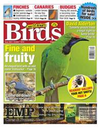 Cage & Aviary Birds issue No.5823 FIne & Fruity