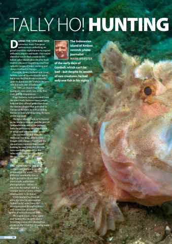 DIVER Preview 50