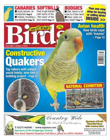 Cage & Aviary Birds issue No.5826 Constructive Quakers