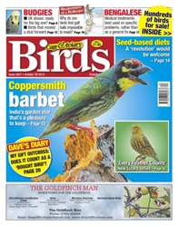 Cage & Aviary Birds issue No.5827 Coppersmith Barbet