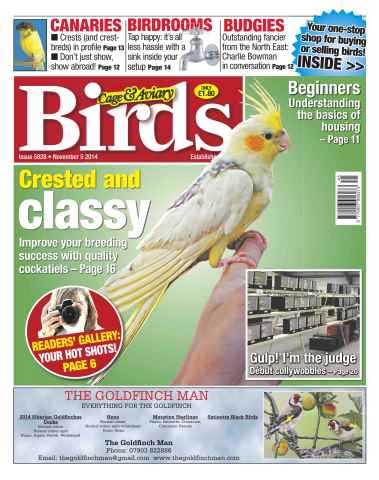 Cage & Aviary Birds issue No.5828 Crested and Classy