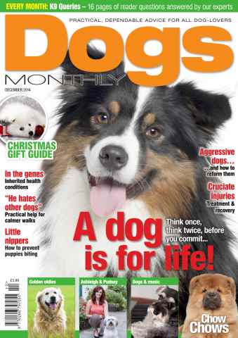 Dogs Monthly issue Dogs Monthly December 2014