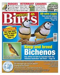 Cage & Aviary Birds issue No.5829 keep & Breed Bichenos