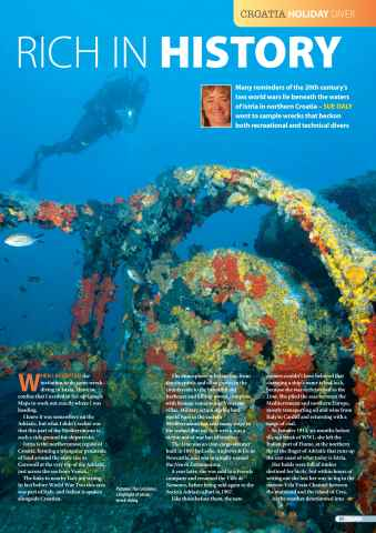 DIVER Preview 31
