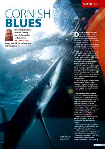 DIVER Preview 43