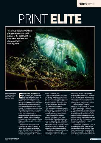 DIVER Preview 65
