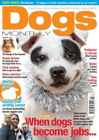 Dogs Monthly issue January 2015