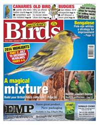 Cage & Aviary Birds issue No.5836 A Magical Mixture