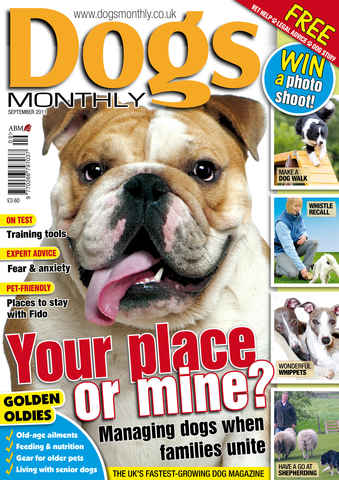 Dogs Monthly issue September 2011