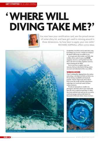 DIVER Preview 24
