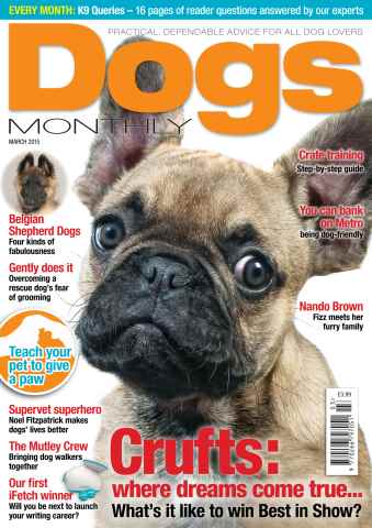 Dogs Monthly issue March 2015