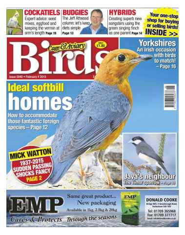 Cage & Aviary Birds issue No.5840 Ideal Softbill Homes