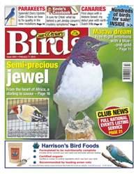 Cage & Aviary Birds issue No.5841 Semi-precious Jewel